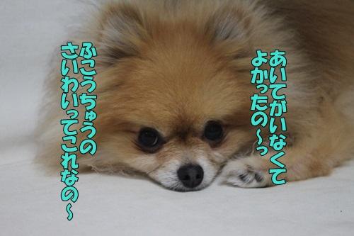 IMG_848700.jpg