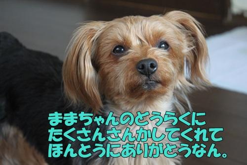 IMG_848800.jpg