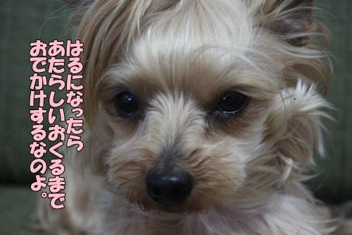 IMG_853300.jpg