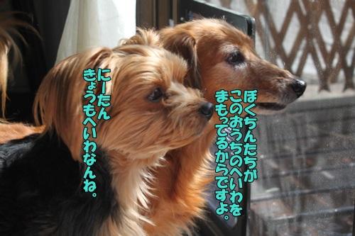 IMG_855300.jpg