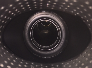 V36-GARULA-4.jpeg