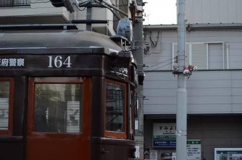 DSC_7771.jpg
