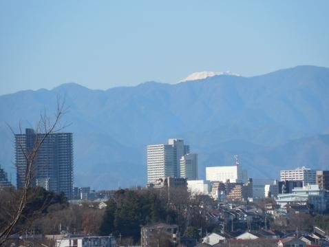 成瀬山吹緑地から見た富士山@町田市b
