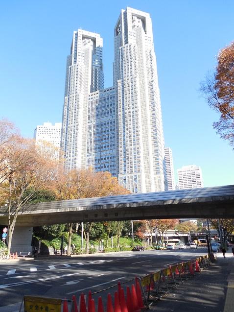 ふれあい通の公園大橋@東京都新宿区a