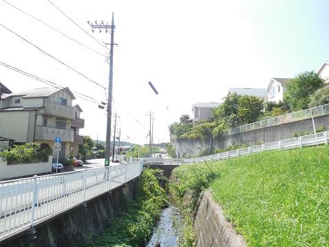 奈良川の奈良の子橋@横浜市青葉区f