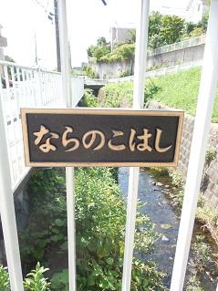 奈良川の奈良の子橋@横浜市青葉区b