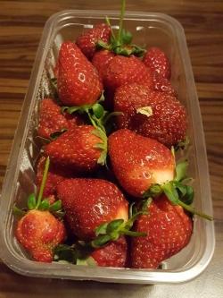 今が旬の苺たち、でもちょっとタネが硬い