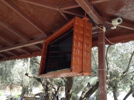 テレビは箱に入れるのがトルコ流