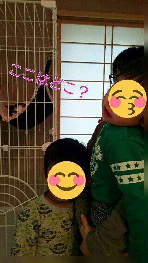 20160309135016661.jpg