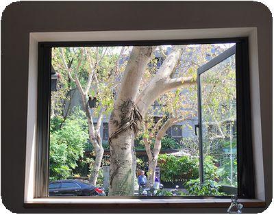 Woolloomooloo窓