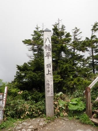 100704八幡平 (10)75
