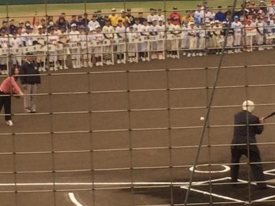 稲村市長始球式。