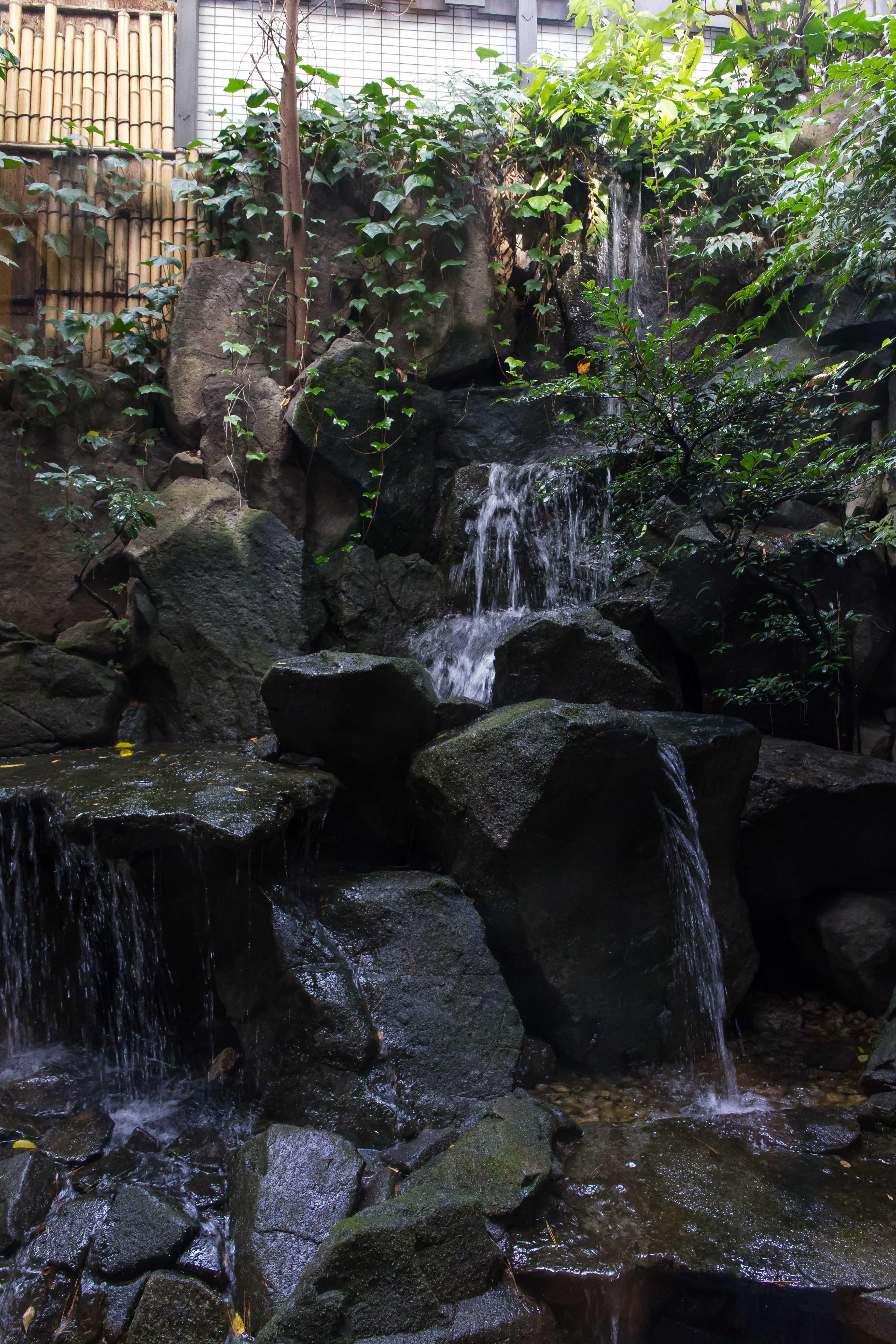 赤坂津つ井で会食(1)