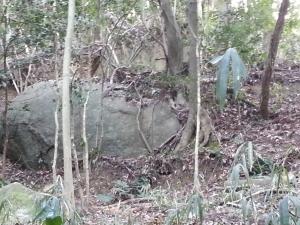 160324岩