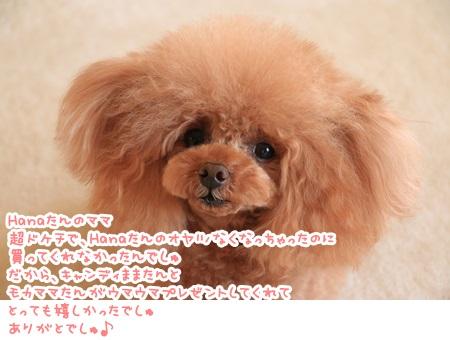 IMG_8506.jpg