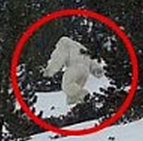 【UMA】ついに雪男・イエティを発見か!スペインで撮影…動画が投稿され話題に