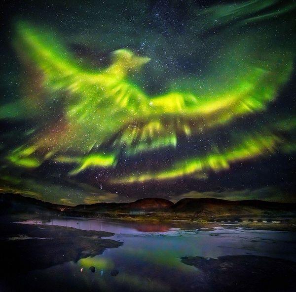 まるで不死鳥が飛び立っていく様な「オーロラ」がアイスランドに出現!