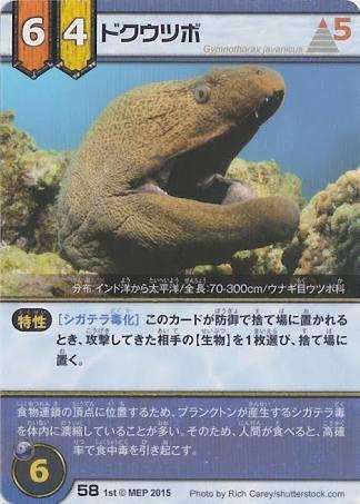 http://blog-imgs-90.fc2.com/o/k/a/okarutojishinyogen/news_1455632667_7701.jpg