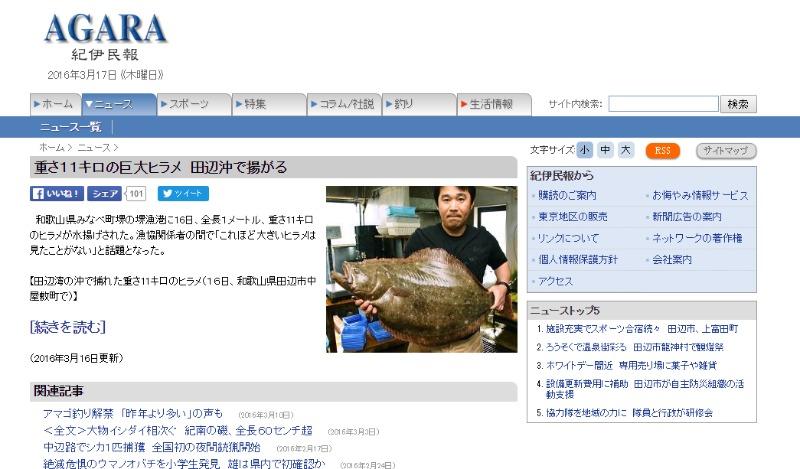 【和歌山】全長1メートル重さは11キロの「巨大ヒラメ」が田辺沖で揚がる!一般的なサイズは3キロ…漁協関係者「こんなデカいヒラメ見たことない」