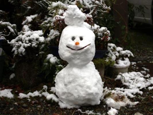 snow234666444.jpg