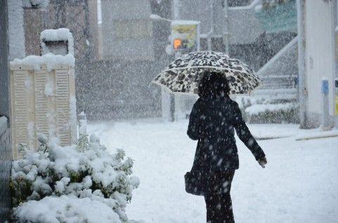 snow8758749735213.jpg