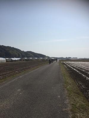 野菜収穫サイクリング12
