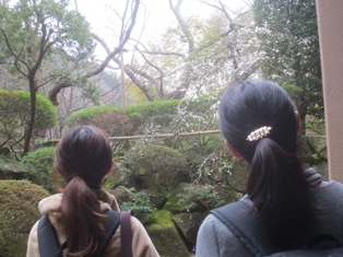 IMG_5636鎌倉