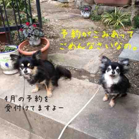fc2blog_20160304091311112.jpg