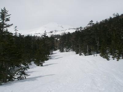 P3306904.jpg