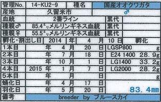 web-14-KU2-9♂834