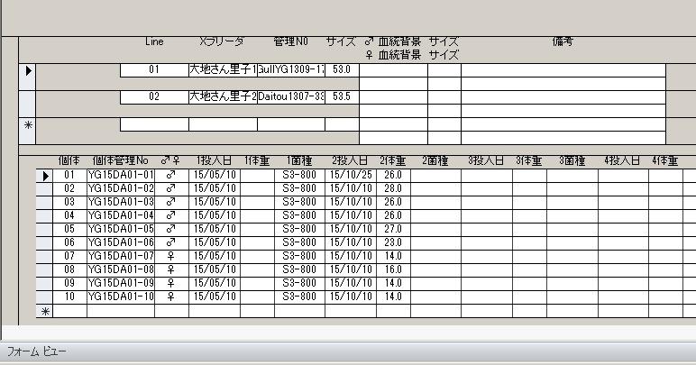 DB-disp001-s-002.jpg
