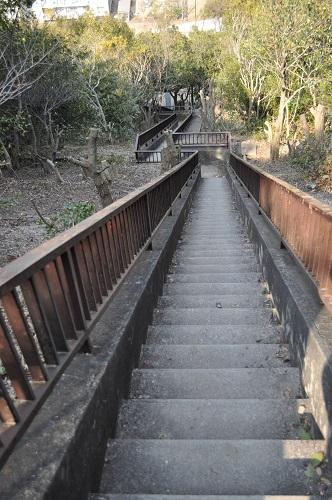 おらが山階段