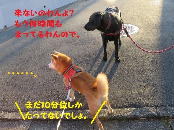 20160302-04.jpg