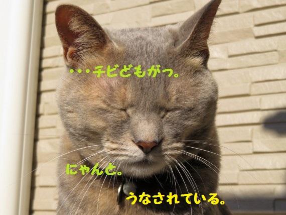 20160309-03.jpg