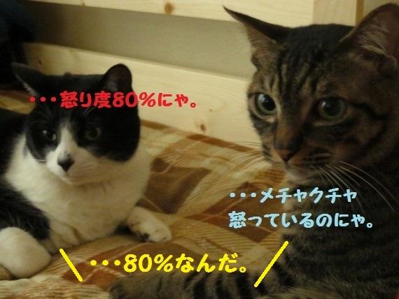 20160324-0008.jpg