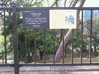 naniwafujisanNEC_0140.jpg