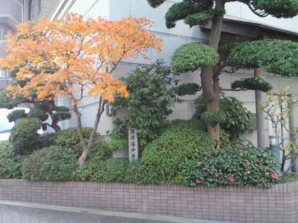 satsumahannakakurayashikiatoDCIM1115.jpg