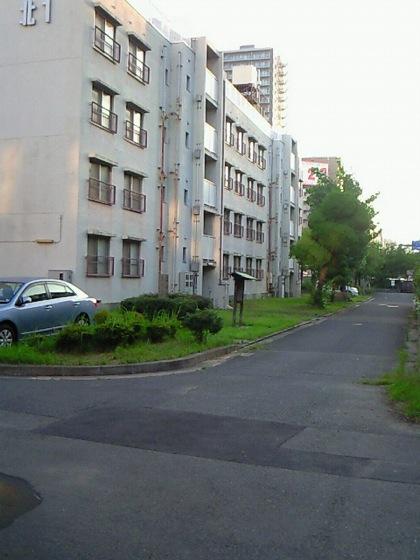 senshindoatoNEC_0166_1.jpg