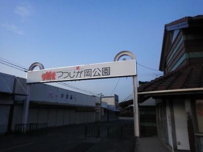 ぎじんじん (10)