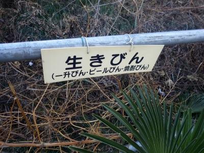 はいぱーいぬ (7)