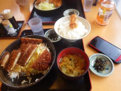 ダブルカツ丼ライス大盛り(11)