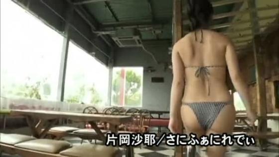 片岡沙耶 さにふぁにれでぃのGカップ谷間&下乳キャプ 画像53枚 23