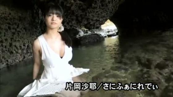 片岡沙耶 さにふぁにれでぃのGカップ谷間&下乳キャプ 画像53枚 26