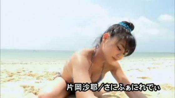 片岡沙耶 さにふぁにれでぃのGカップ谷間&下乳キャプ 画像53枚 5