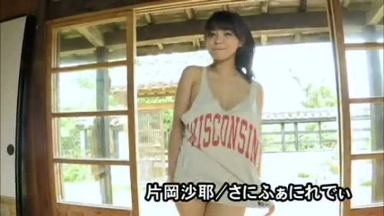 片岡沙耶 さにふぁにれでぃのGカップ谷間&下乳キャプ 画像53枚 7