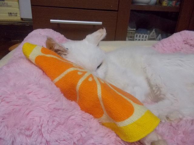 ベッドとミニタオル