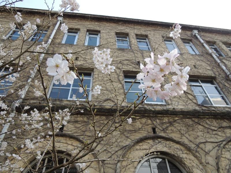 旧京都市立成徳中学校