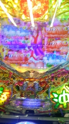 DSC_0270_20160223174803363.jpg