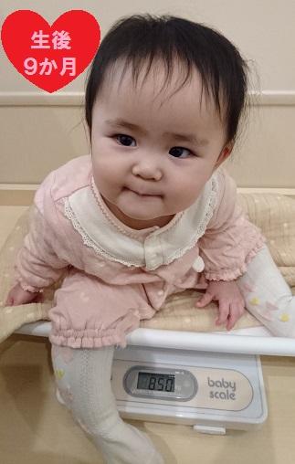 生後9か月 着衣 8.5kg