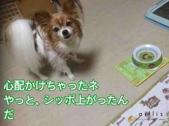 fc2blog_20160220204144c87.jpg